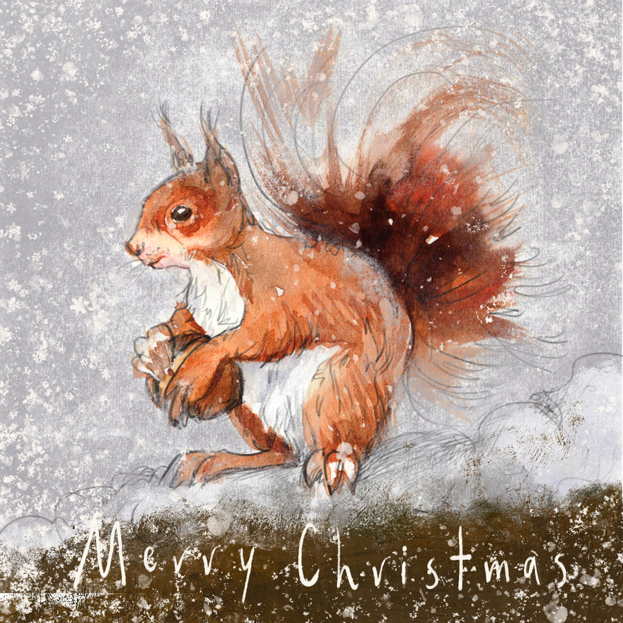 Squirrel in the Snow - Greeting card