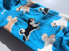 Load image into Gallery viewer, Blue-style Shiba Inu Socks