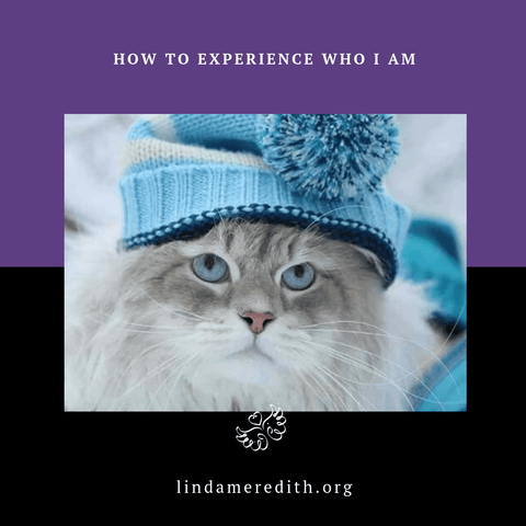 How to Experience Who I Am