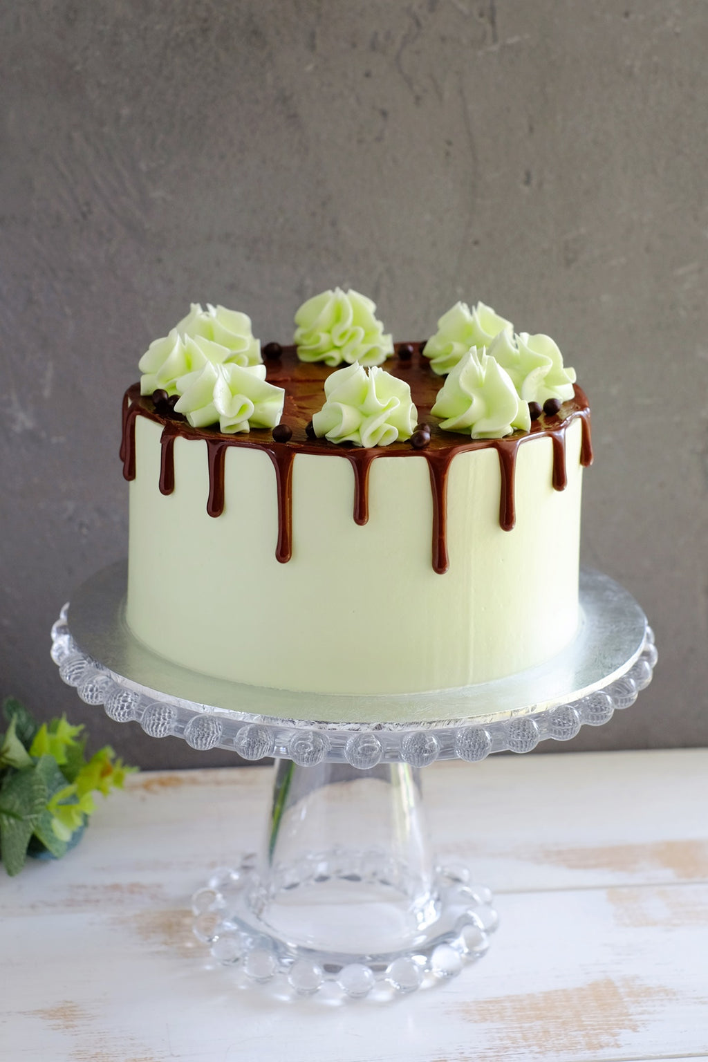 Chocolate Mint Cake (Next Day Collection)
