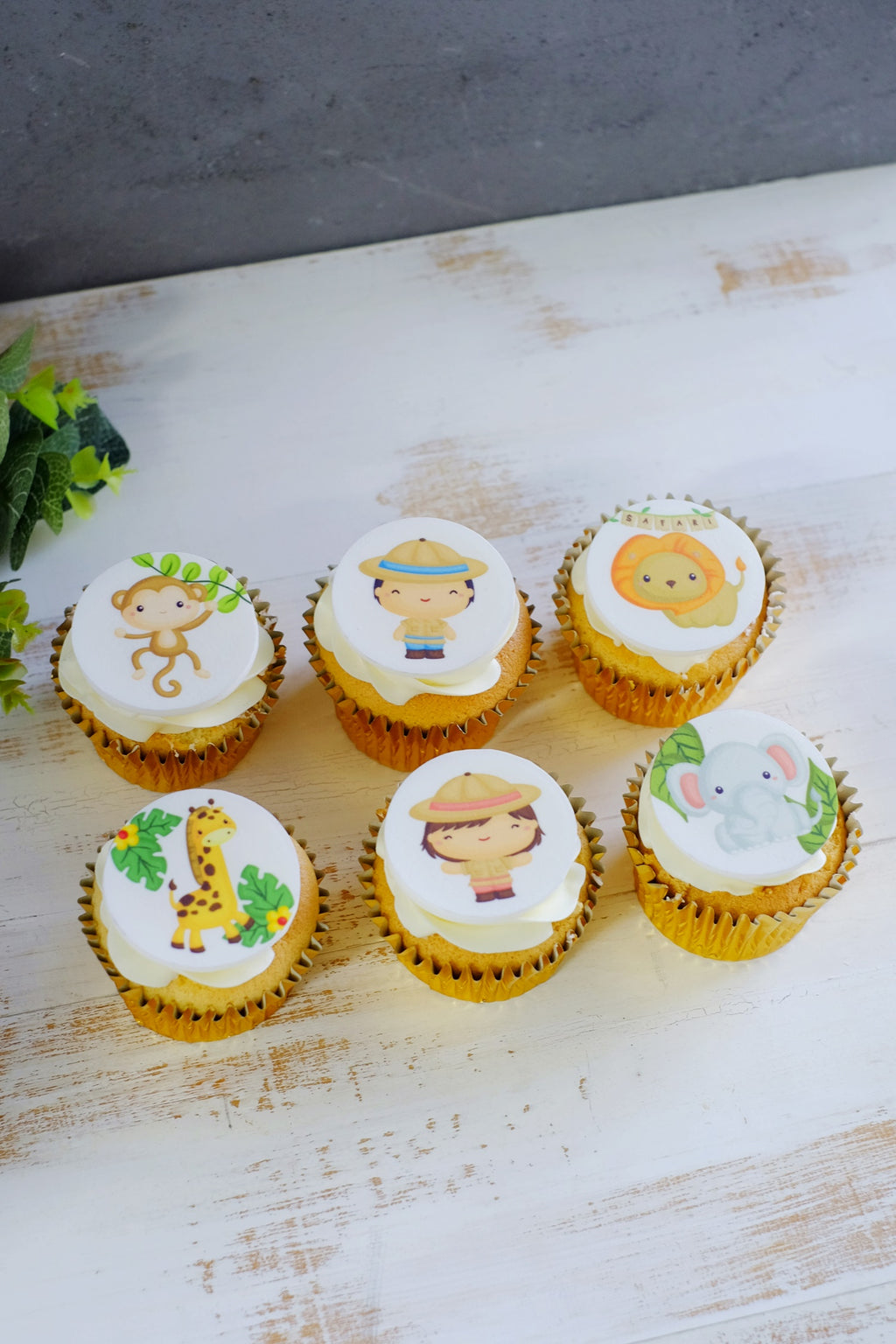 Edible Icing Cupcakes (From $3.75 / $5 Each)