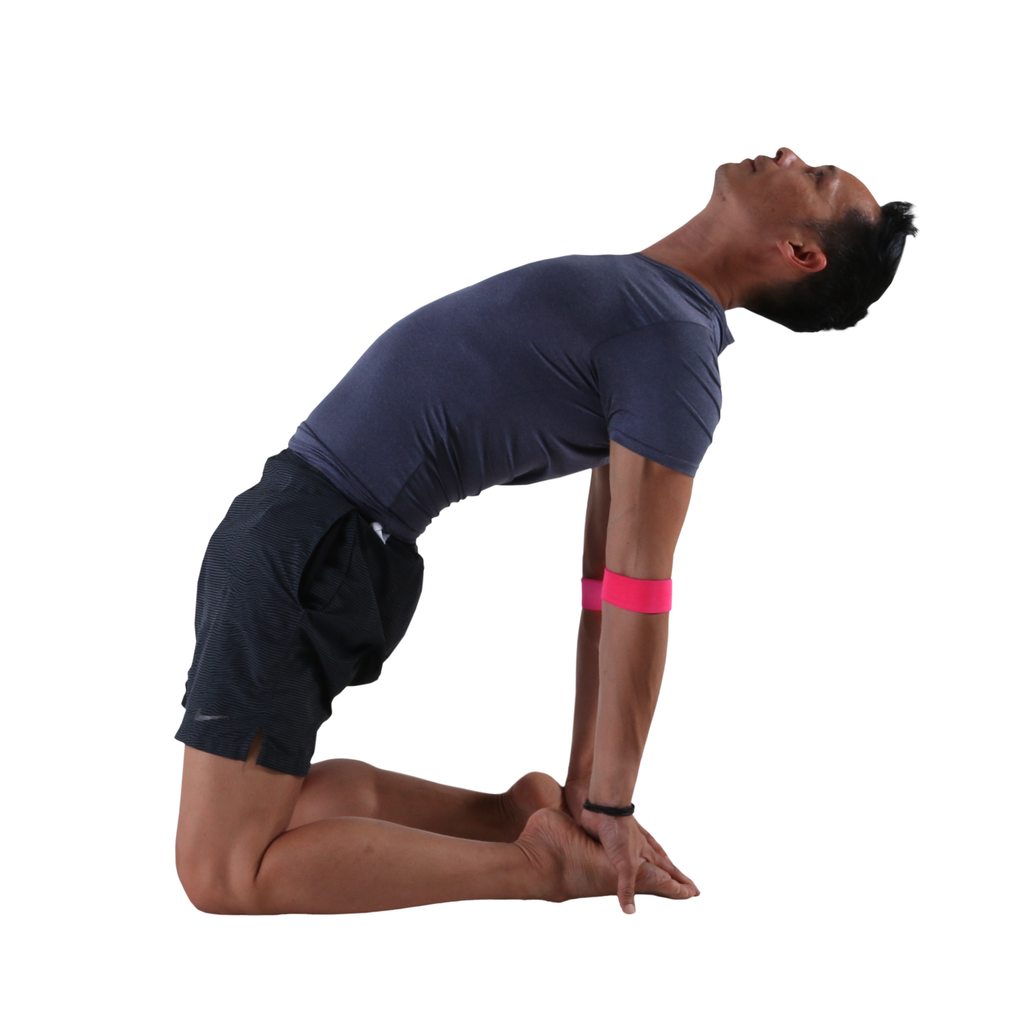 Camel Pose with the Small PTP Yoga 8Loop