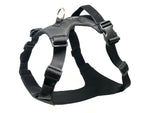 DUO 'AMERICAN ECLIPSE' Adventure Dog Harness