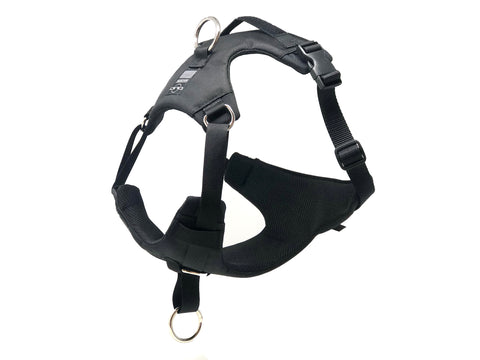 DUO 'AMERICAN DIRECT' NO PULL Dog Harness