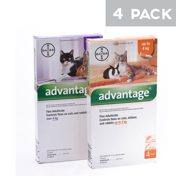 Advantage Flea and Lice Spot On Treatment for Large Cats (4kg +) - Purple