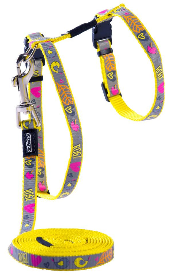 Rogz Catz ReflectoCat 11mm Small Reflective Cat H-Harness and Lead Combination, Dayglo Bird Design