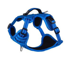 ROGZ Utility Small Nitelilfe Explore Harness, Blue Reflective