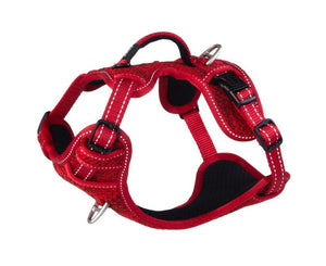 ROGZ Utility Small Nitelilfe Explore Harness, Red Reflective