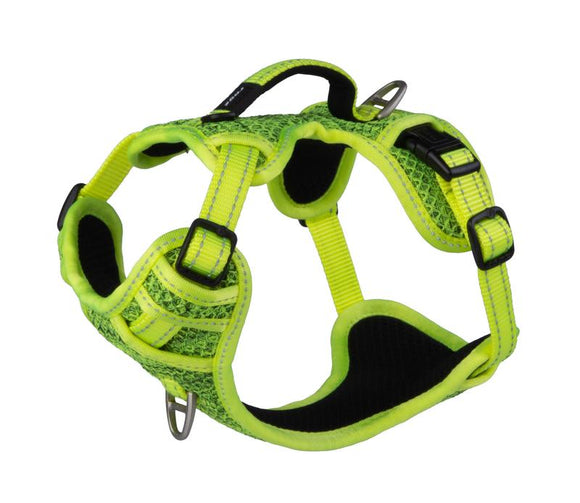 ROGZ Utility Small Nitelilfe Explore Harness, Yellow Reflective