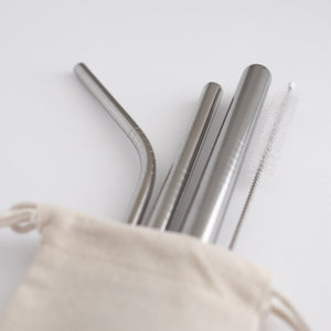 Stainless Steel Straw Set - Silver from Ample + Good