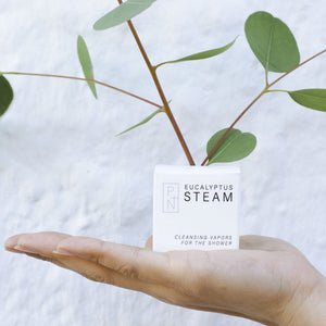 Eucalyptus Steam Shower Cube from No Tox Life