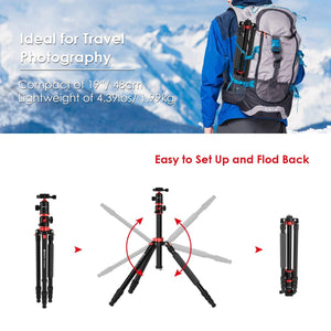 Geekoto Tripod, Camera Tripod for DSLR, Compact 75'' Aluminum Tripod with 360 Degree Ball Head, Professional Horizontal Tripod for Travel and Work (X25)