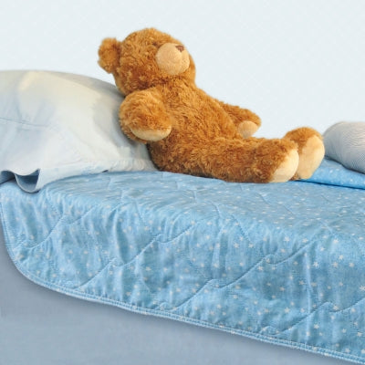 Review of Bedwetting Facts