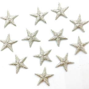 "Silver Metallic 5/8"" Star Iron-on Embroidered Applique"
