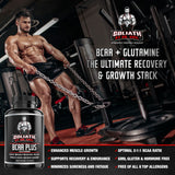 BCAA Plus with L Glutamine - Branch Chain Amino Acids with Optimal 2:1:1 Ratio - Enhanced Muscle Recovery & Growth Stack