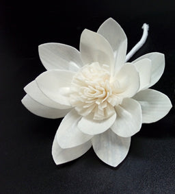 Water Lily Sola Flower 8cm