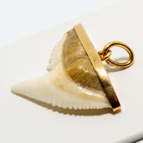 18ct Rose Gold Shark Tooth Pendant