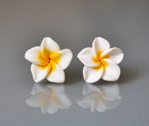 Summer Flowers  - Hawaii feeling Blüten Plumeria - Frangipani