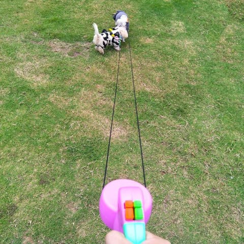 Wigzi Dual Doggie Walks