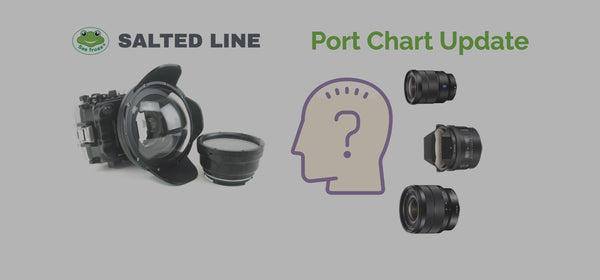 How to understand which lens works well with a port