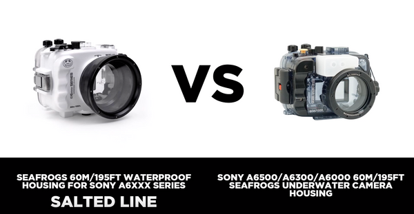 What is the difference between basic Seafrogs housing and more advanced Seafrogs Salted Line housing for Sony a6000 – a6500 cameras?