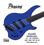 Payson Fanned Flats Medium Light Tapered Bass Strings