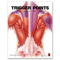 Anatomical Chart Trigger Points Flipbook :Understanding Myofascial Pain and Discomfort [2E]