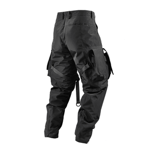 Reindee Lusion RL-81 Techwear Pant - ubertechwear | Affordable Techwear Clothing