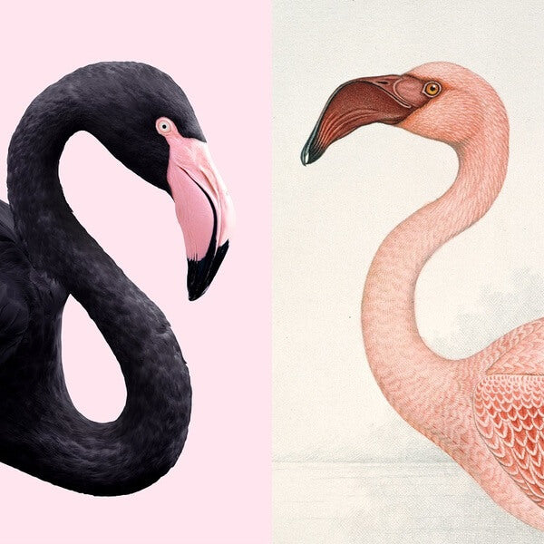 IXXI - Mural Flamingo Fever (doble cara)