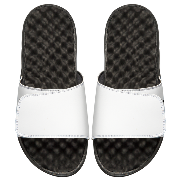 Customs Slides