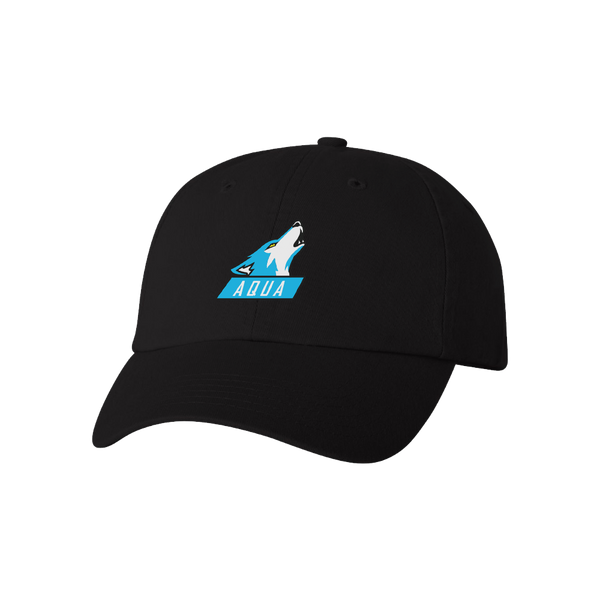 AQUA Esport Dad Hat