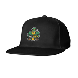 Big Money Esports Snapback