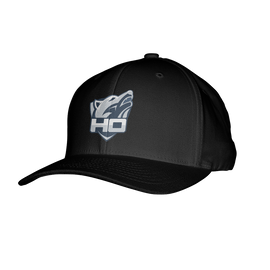 HO Flexfit Hat