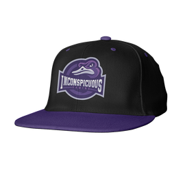 Inconspicuous Gaming Snapback