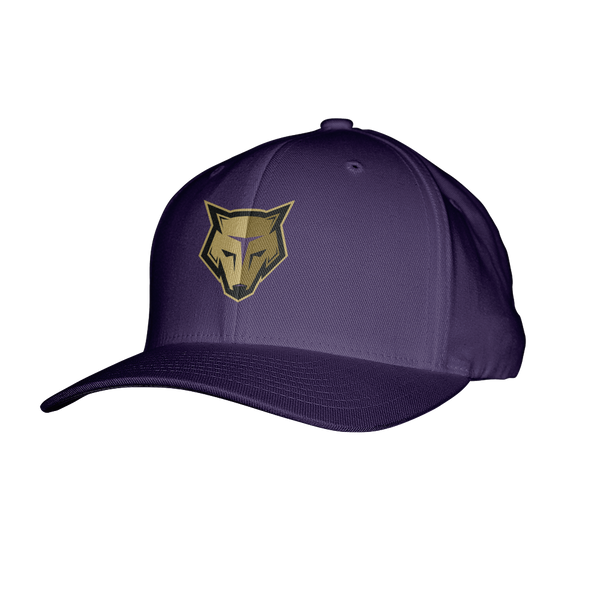 New England Storm Wolves Flexfit Hat