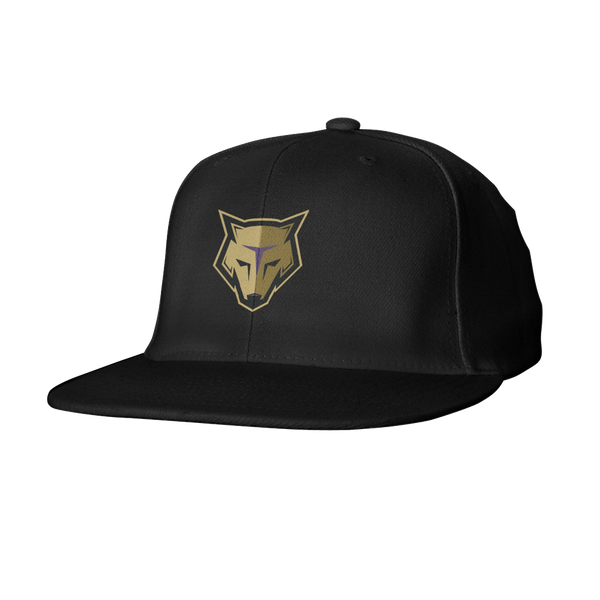 New England Storm Wolves Snapback