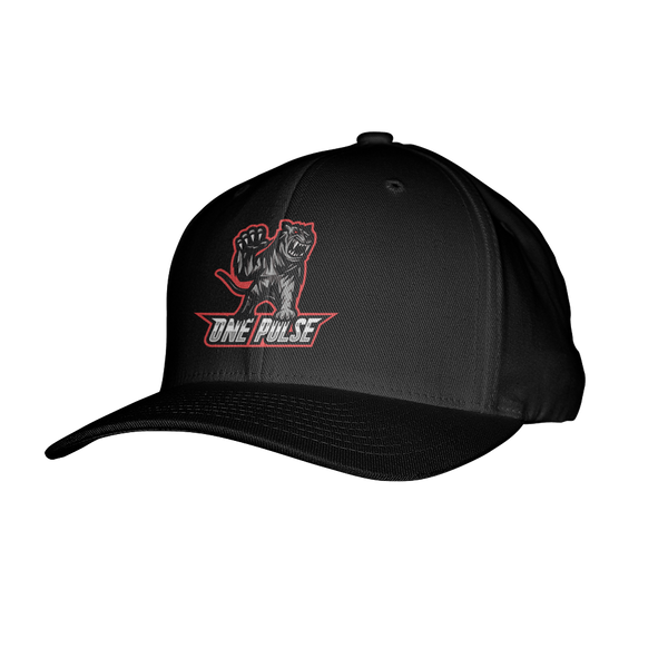One Pulse Flexfit Hat