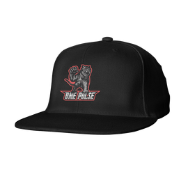 One Pulse Snapback Hat