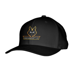 Swift Gaming Flexfit Hat