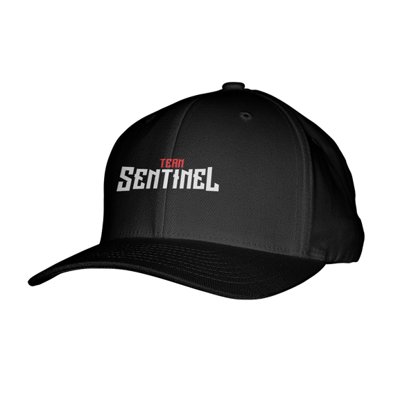 Team Sentinel Flexfit Hat