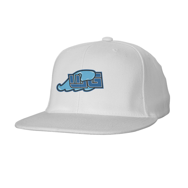Wavey Gaming Snapback Hat
