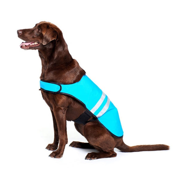ZippyPaws Adventure Gear Blue Cooling Dog Vest