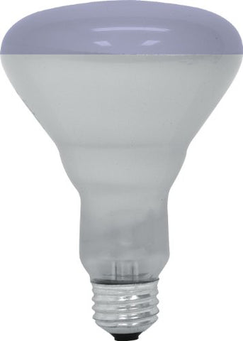GE Lighting 20996 65-Watt R30 Plant Flood Light Bulb, Plant Light - llightsdaddy - GE Lighting - Wall Plates