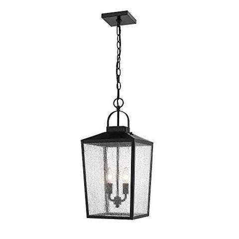 "Millennium Lighting 2655 PBK 22"" Two Light Outdoor Hanging Lantern, Powder Coat Black Finish with Clear Seeded Glass"