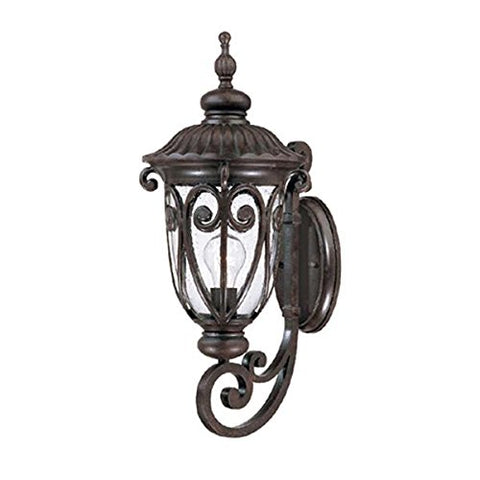 Acclaim 2111MM Naples Collection 1-Light Wall Mount Outdoor Light Fixture, Marbleized Mahogany