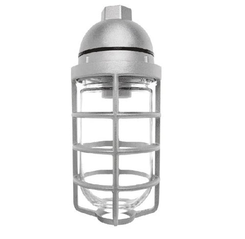 "RAB Lighting VP100DG Vaporproof VP Ceiling Pendant Mount with Glass Globe and Cast Guard, A19 Type, Aluminum, 150W Power, 1/2"" Hub, Natural"