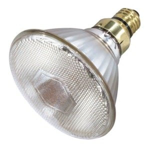 Satco S4888 Medium Bulb in Light Finish, 5.31 inches, Clear