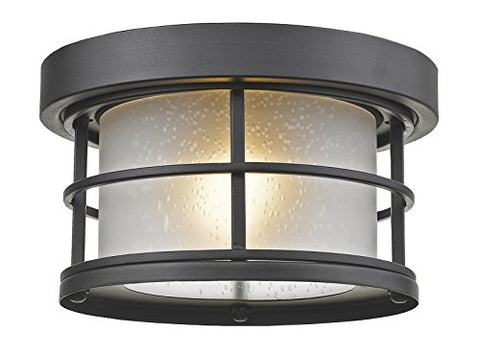1 Light Outdoor 556F-BK - llightsdaddy - Z-Lite - Outdoor Porch & Patio Lights