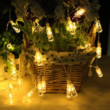 LED Wine Bottles Lights, Battery Operated String Lights with Remote Control (Warm White Glow)