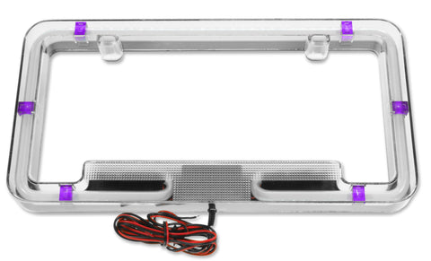 Neon License Plate Frame - PURPLE - llightsdaddy - PlasmaGlow - COMMERCIAL LIGHTING